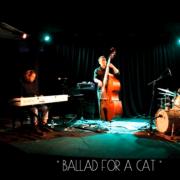 Cold Feet Trio
